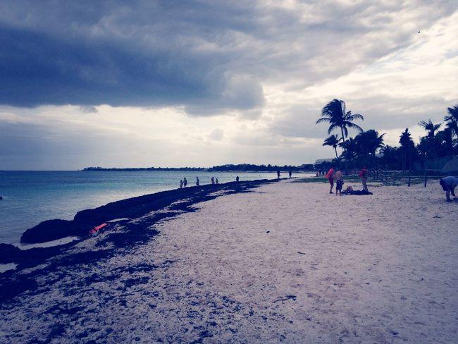 Snorkel bBeachMMayan RivieraMMexico