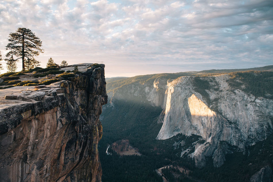 Beautiful stock photos of forest,  Absence,  Beauty In Nature,  Cliff,  Day