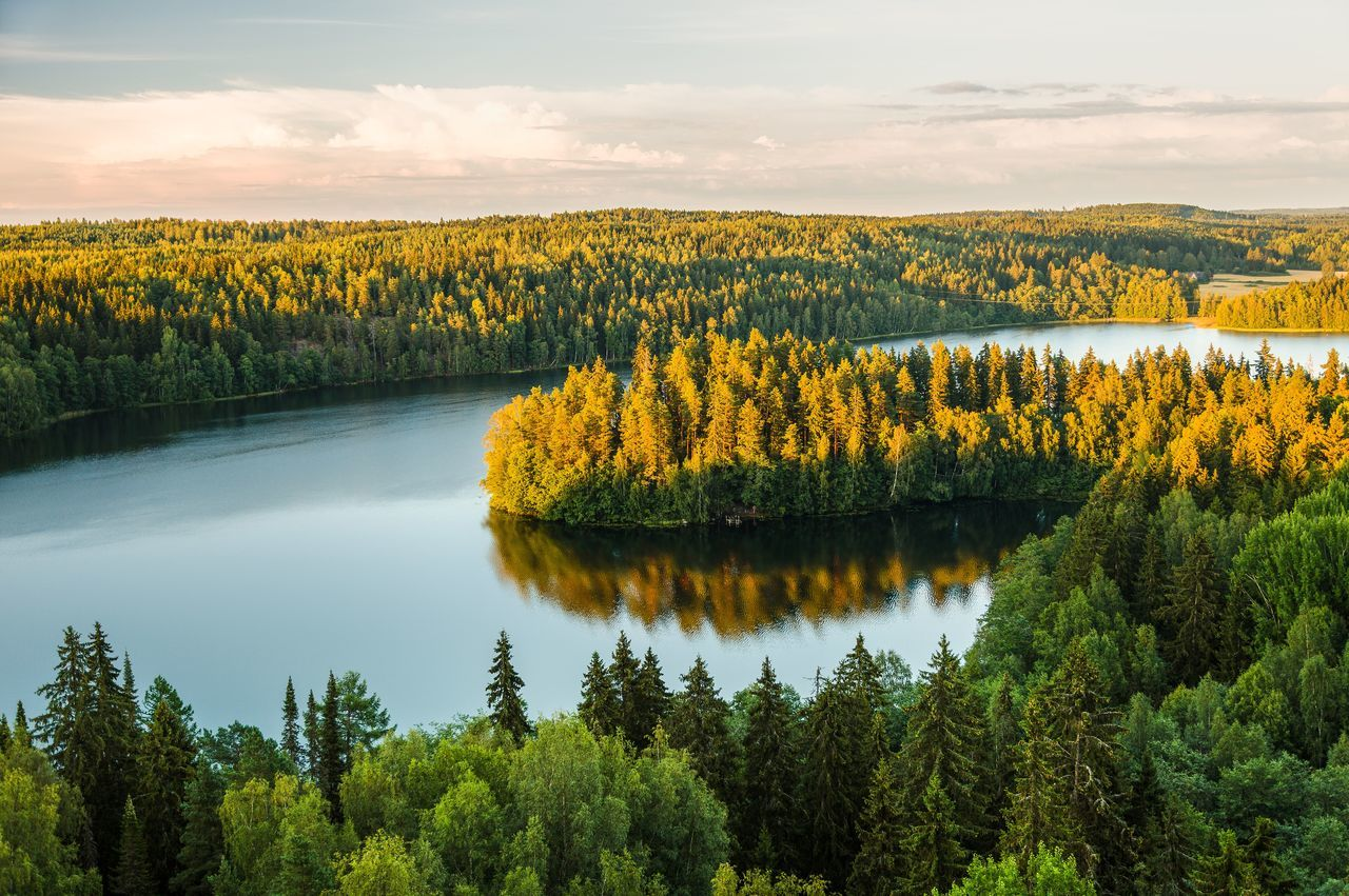 Sunset and peaceful lake view at Aulanko nature park in Finland. Aerial Shot Aerial View Aulanko Beauty In Nature Cloud - Sky Day Finland Lake Lake View Landscape Nature No People Outdoors Peaceful Reflection Scenery Scenics Sky Summer Sunset Tranquil Scene Tranquility Tree Water Waterfront