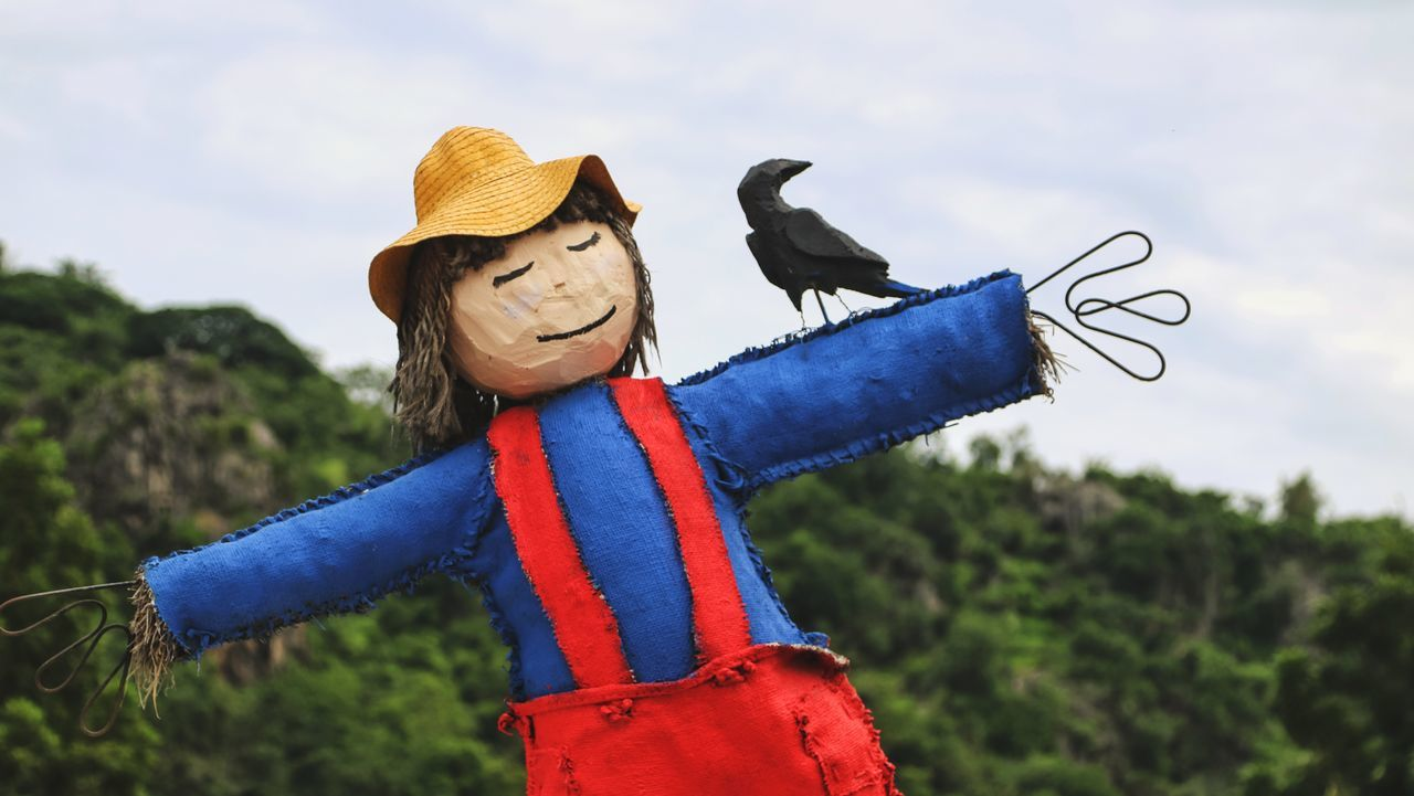 Scarecrow, Strawman Strawman Humor Childhood Males  One Person Child One Boy Only Sky Fun Boys Happiness Smiling