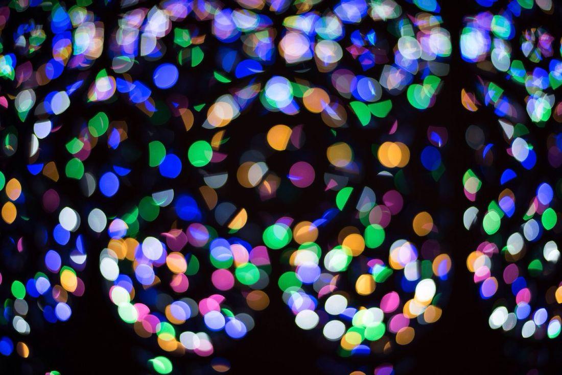 Nikon D810 Snapshot Colors Light