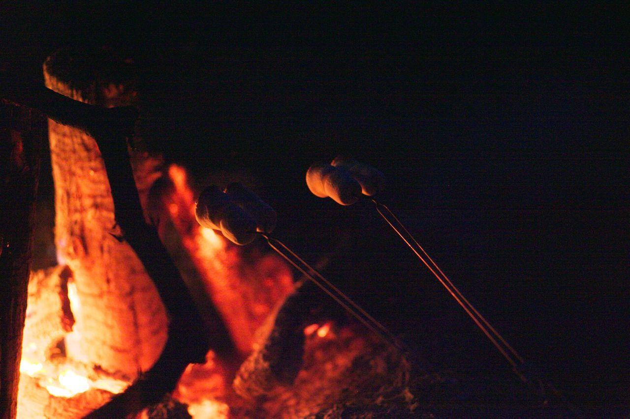 Bonfire Campfire Camping Fire Friends Night Smores Summer
