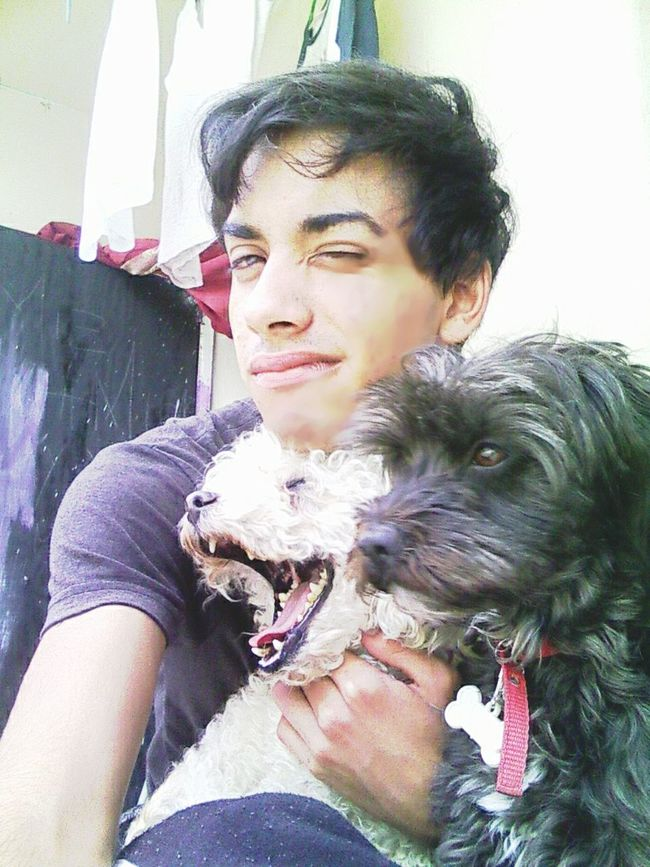 I love my dogs A Dogs Life My Pets :) I Love My Dog My Friend My Love Hello World Cheese! Gay Gayteen Gay Boys