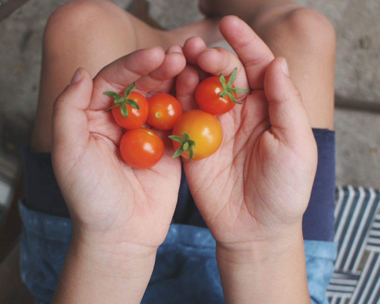 Tomatoes Container Gardening Gardening Summer Summertime Kids