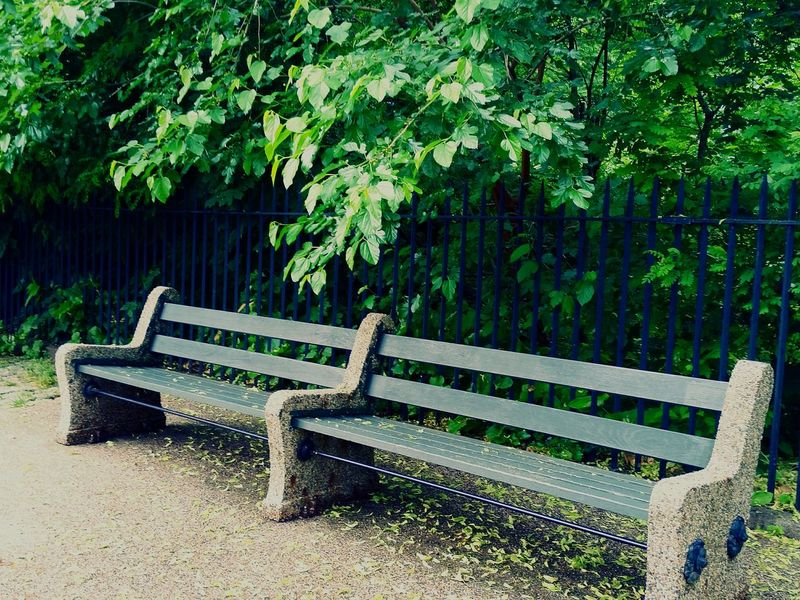 Bench Park Bench Have A Seat Shade