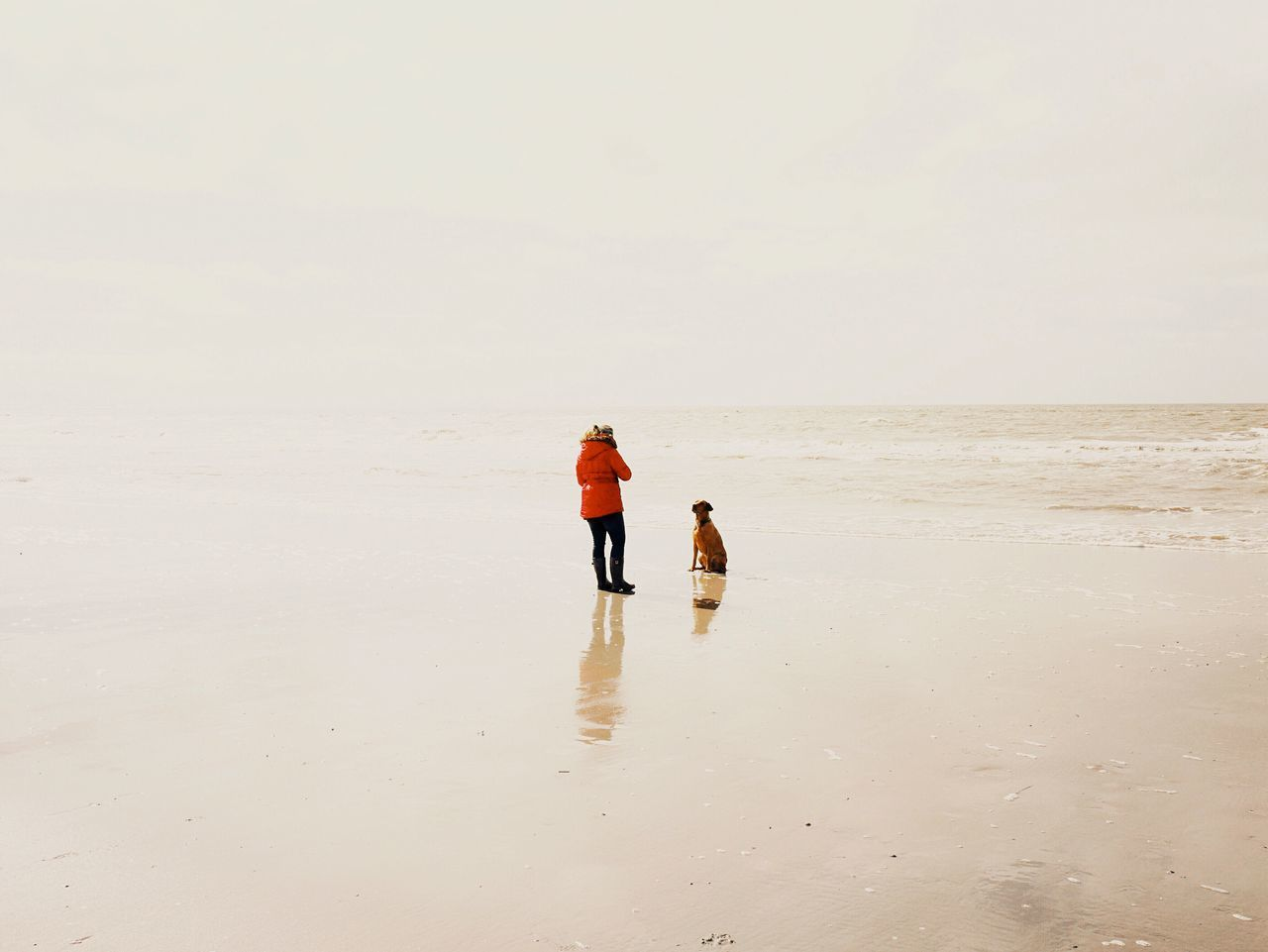 Woman with her dog , Sankt Peter -Ording Let's Go. Together. The Photojournalist - 2015 EyeEm Awards Capture The Moment Freedom Beachphotography Sound Of Life Deceptively Simple Edge Of The World Creative Light And Shadow Perfect Match Picturing Individuality My Best Photo 2015 Adventure Buddies Pastel Power Q Quiet Landscapes With WhiteWall The KIOMI Collection People Of The Oceans 43 Golden Moments On The Way Colour Of Life People And Places Miles Away Long Goodbye The Great Outdoors - 2017 EyeEm Awards