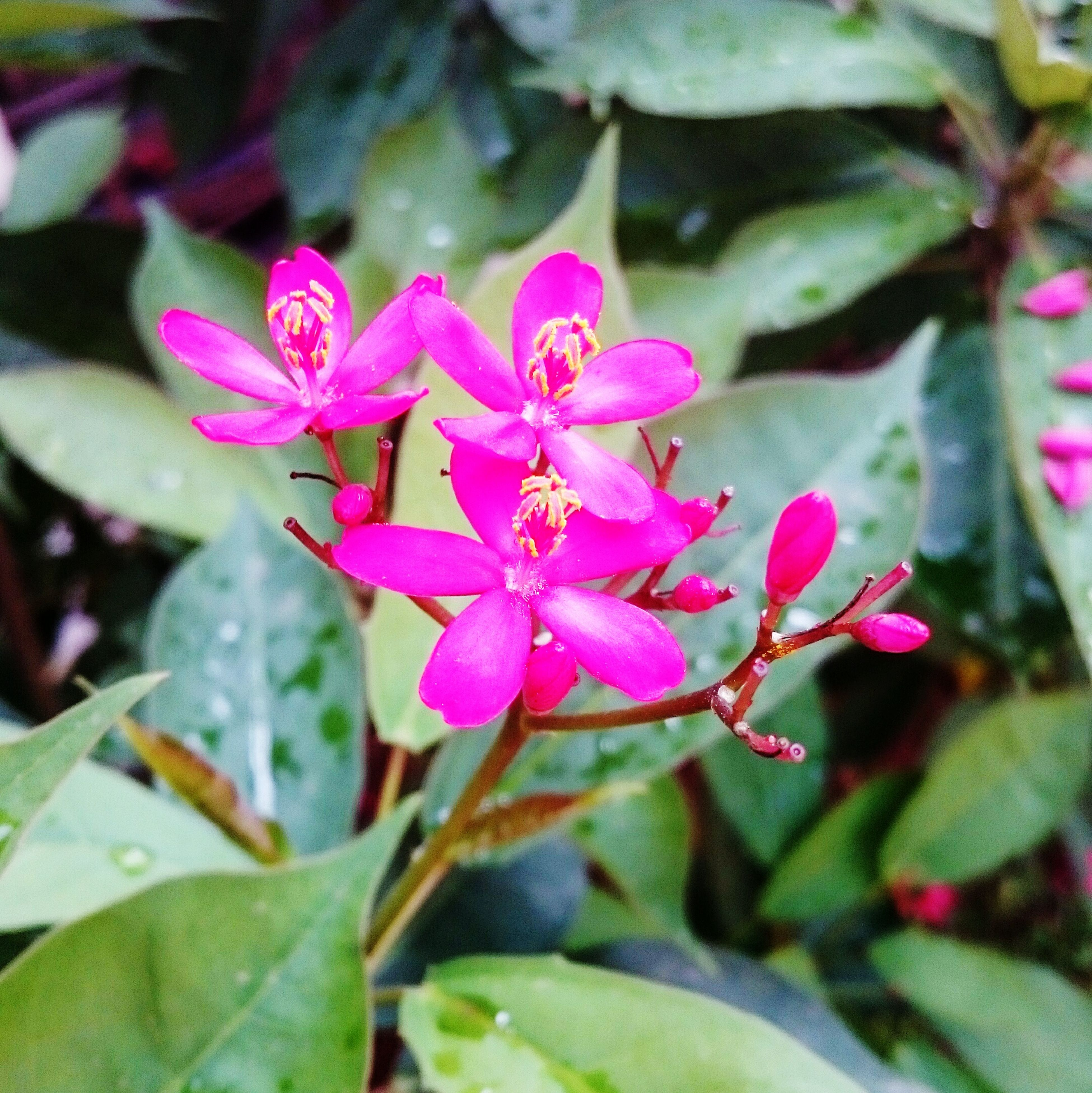EyeEm Nature Lover First Eyeem Photo