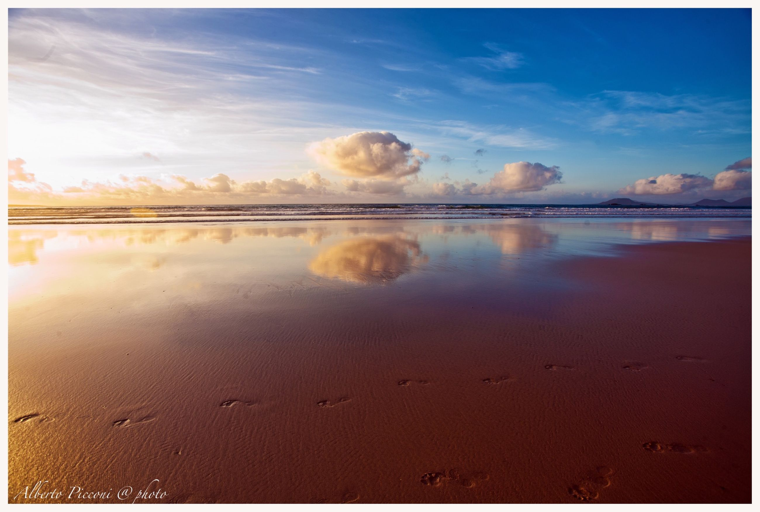 water, animal themes, transfer print, sky, auto post production filter, beach, sand, one animal, tranquil scene, nature, tranquility, shore, sea, scenics, beauty in nature, cloud - sky, dog, reflection, outdoors, domestic animals