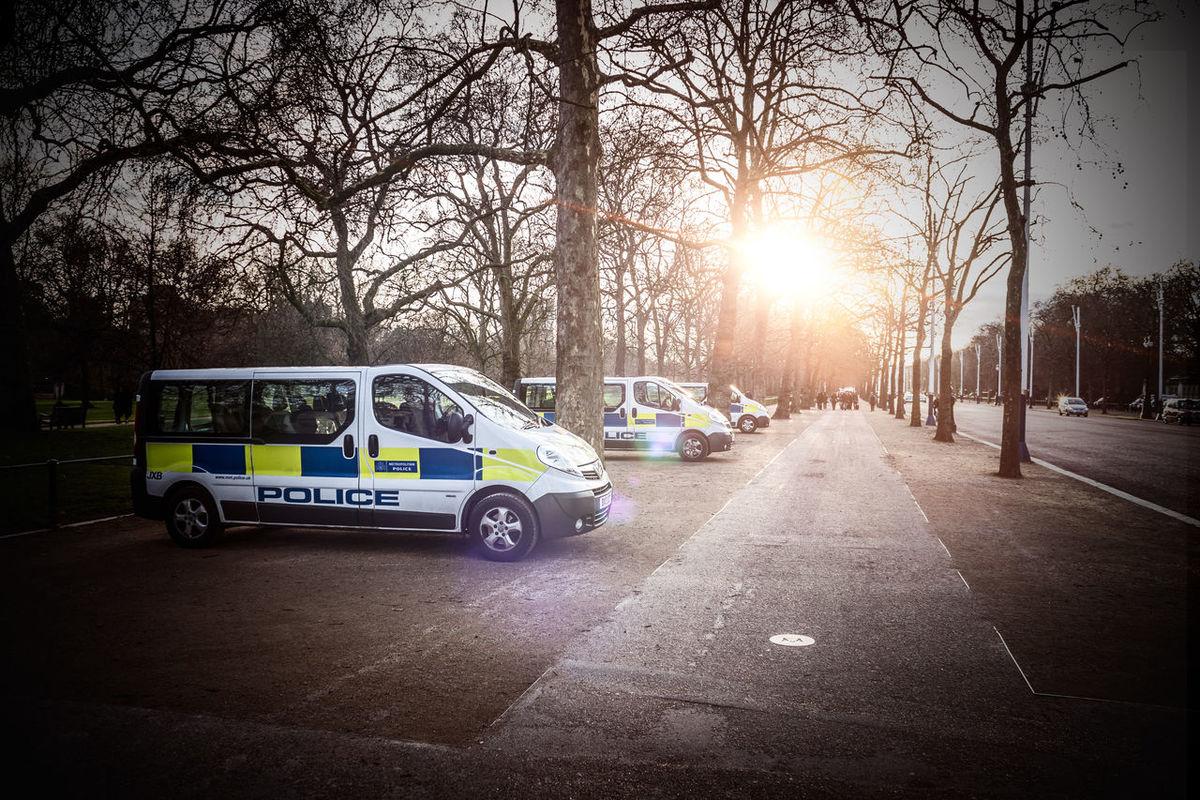Waiting, hoping Car Land Vehicle London LONDON❤ Outdoors Park Parking Pavement Police Police Vans Shadow Stationary Street Sun Flare Sunshine Transportation Tree Vignette