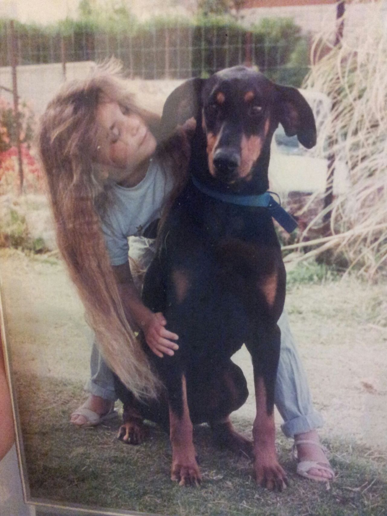me as a little girl n the love of my life :-) Dogs Doggy Love Doberman