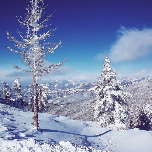 breathtaking Winter Zima Oldmountain Staraplanina snow sneg nature priroda sky nebo cold hladnoca happy sreca earth planetazemlja serbia srbija