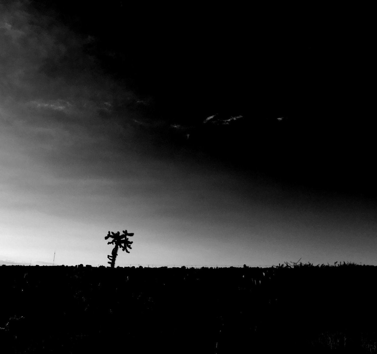 Despedida Silhouette Nature Beauty In Nature EyeEm Best Shots EyeEm Best Shots - Black + White