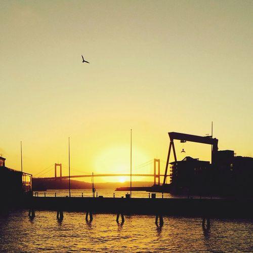 Going Sailing Enjoying The Sun Relaxing ✨