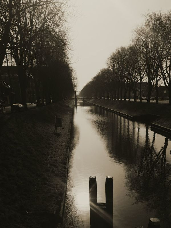 Tree Reflection Nature Water Sun Beauty In Nature Holland❤ Canals And Waterways Canal Sluice Spring