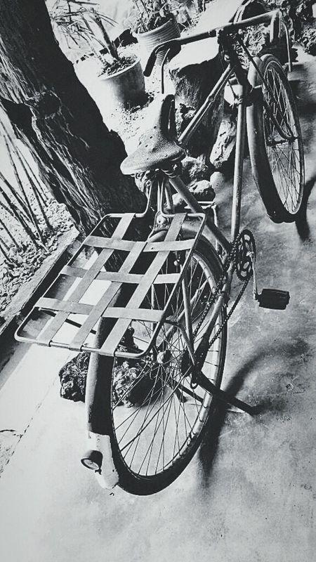 Old bike Old Old School Bikes Bicycle Old Bike Mycapture Travelgram Travel Photography Black And White Photography Black And White Collection  Antique Antique Bike The Shop Around The Corner