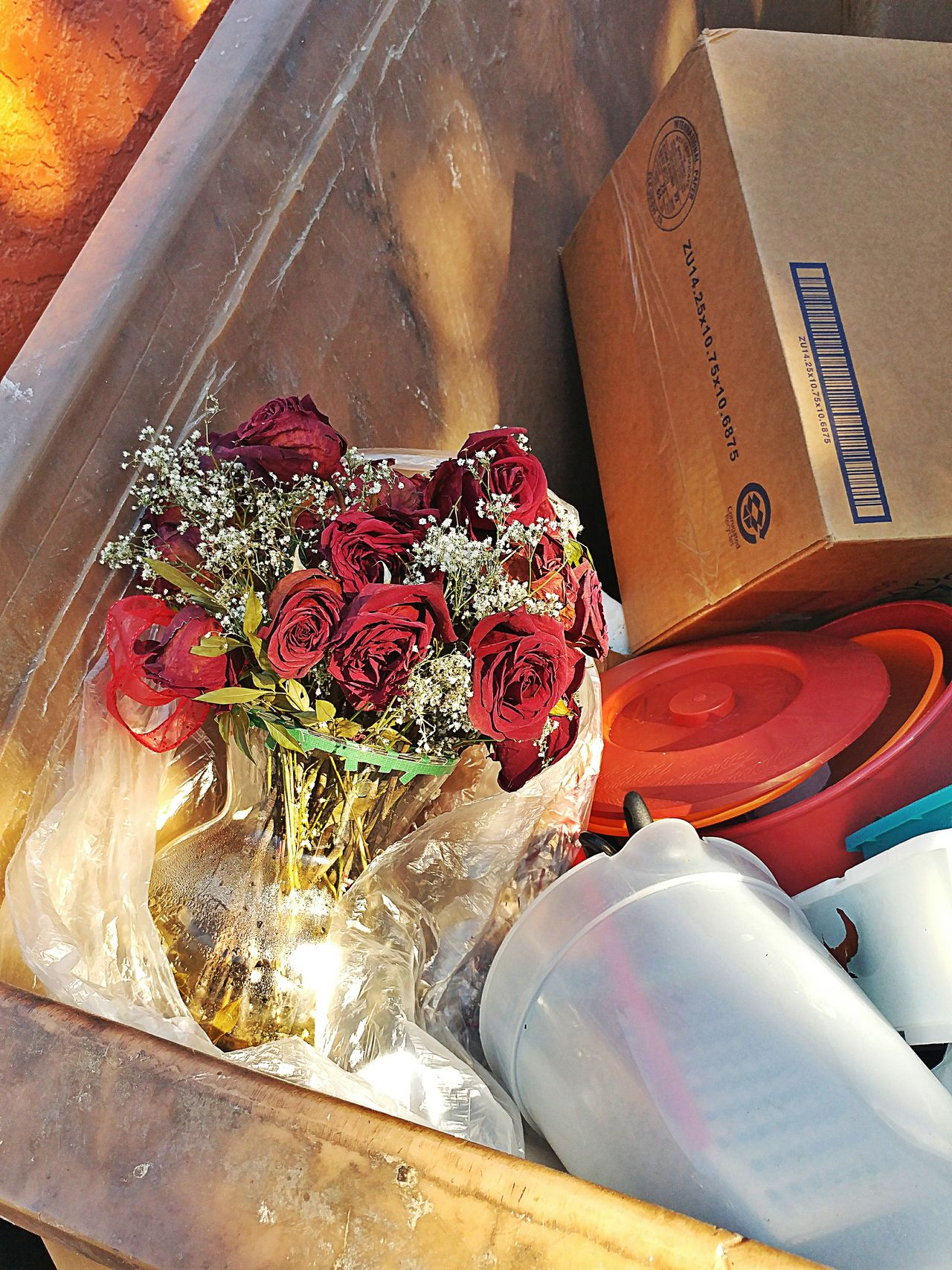 Thrown away roses Indoors  Close-up Table No People Food Day Roses Flowers  Roses Are Red Roses_collection Roses, Flowers, Nature, Garden, Bouquet, Love, Roses🌹 Tempe Az