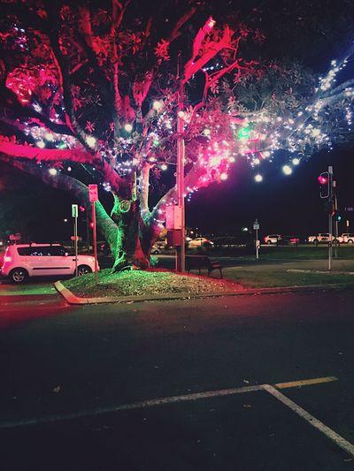 Nigthlife Street Light Australia