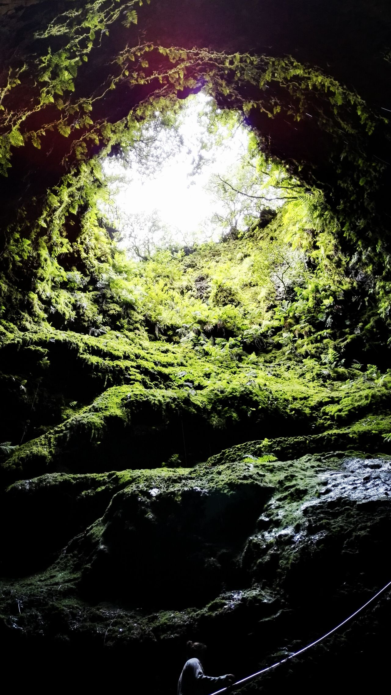 EyeEmBestPics Azoren Naturelovers EyeEm Best Shots - Nature EyeEm Best Shots Showcase July Myphotooftheday Eye4photography  Hiking Nature Photography Vulcanic Landscape EyeEm Nature Lover Green Tropfsteinhöhle Cave Caves Photography Terceira Island Low Angle View Fine Art Photography Light And Shadow Sky Azores Colour Of Life The Magic Mission Dramatic Angles