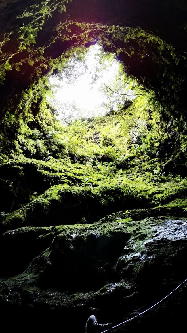 EyeEmBestPics Azoren Naturelovers EyeEm Best Shots - Nature EyeEm Best Shots Showcase July Myphotooftheday Eye4photography  Hiking Nature Photography Vulcanic Landscape EyeEm Nature Lover Green Tropfsteinhöhle Cave Caves Photography Terceira Island Low Angle View Fine Art Photography Light And Shadow Sky Azores