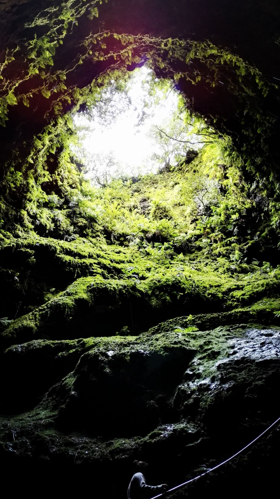 EyeEmBestPics Azoren Naturelovers EyeEm Best Shots - Nature EyeEm Best Shots Showcase July Myphotooftheday Eye4photography  Hiking Nature Photography Vulcanic Landscape EyeEm Nature Lover Green Tropfsteinhöhle Cave Caves Photography Terceira Island Low Angle View Fine Art Photography Light And Shadow Sky Azores Colour Of Life The Magic Mission Dramatic Angles The Secret Spaces