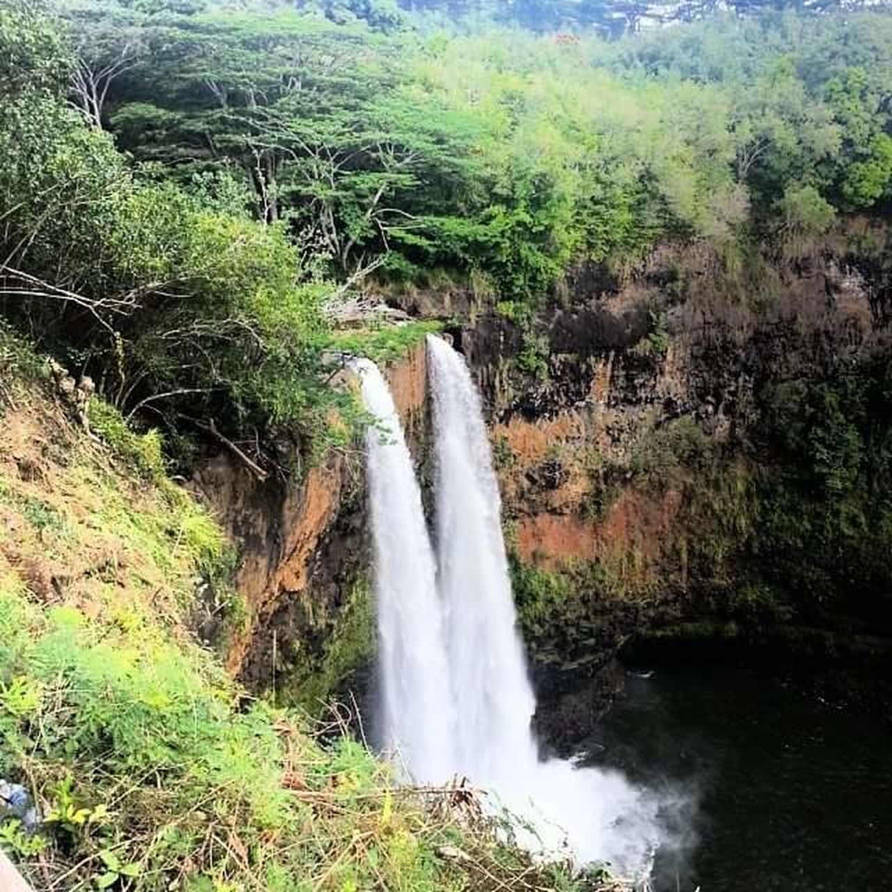Waterfall Water Nature Flowing Flowing Water Beauty In Nature Motion Scenics Splashing Outdoors Vacations Day No People Freshness Kauai Hawaii Tranquility Tropical Climate Postcard Vacations Beauty In Nature