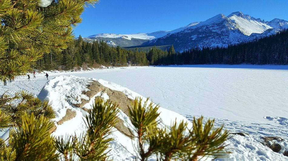 Cold Scenery Colorado Sunny Tree Snow Winter Bear Lake Nature Rocky Mountain National Park Rock Formation Mountains Scenic Color Environment Vacation Wilderness Green White Blue Outdoors