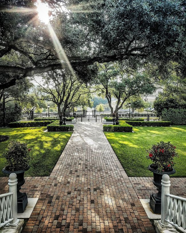 The Path. Tree Footpath The Way Forward Tranquility Nature Scenics Walkway Tranquil Scene Pathway Hdr_pics Streetphotography Texas Hdr_lovers City Life Landscape_photography Good Morning World! Goodmorning EyeEm  Goodmorning :) Goodmorning Sunshine Sunrise Sunsunhereitcomes Sunrise_sunsets_aroundworld
