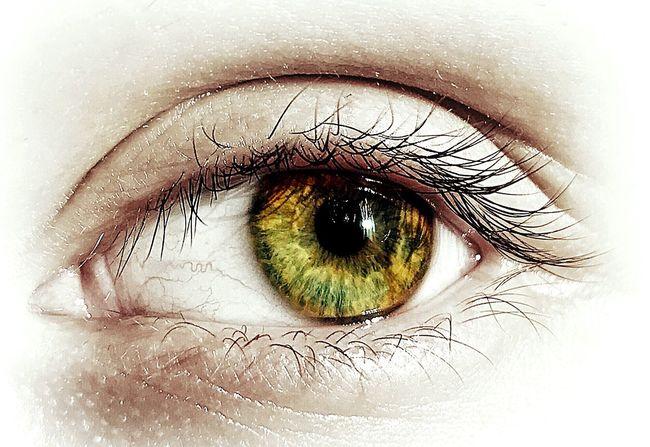 Human Eye Eyeball Iris - Eye Looking At Camera Real People Eyelash Eyesight People Portrait