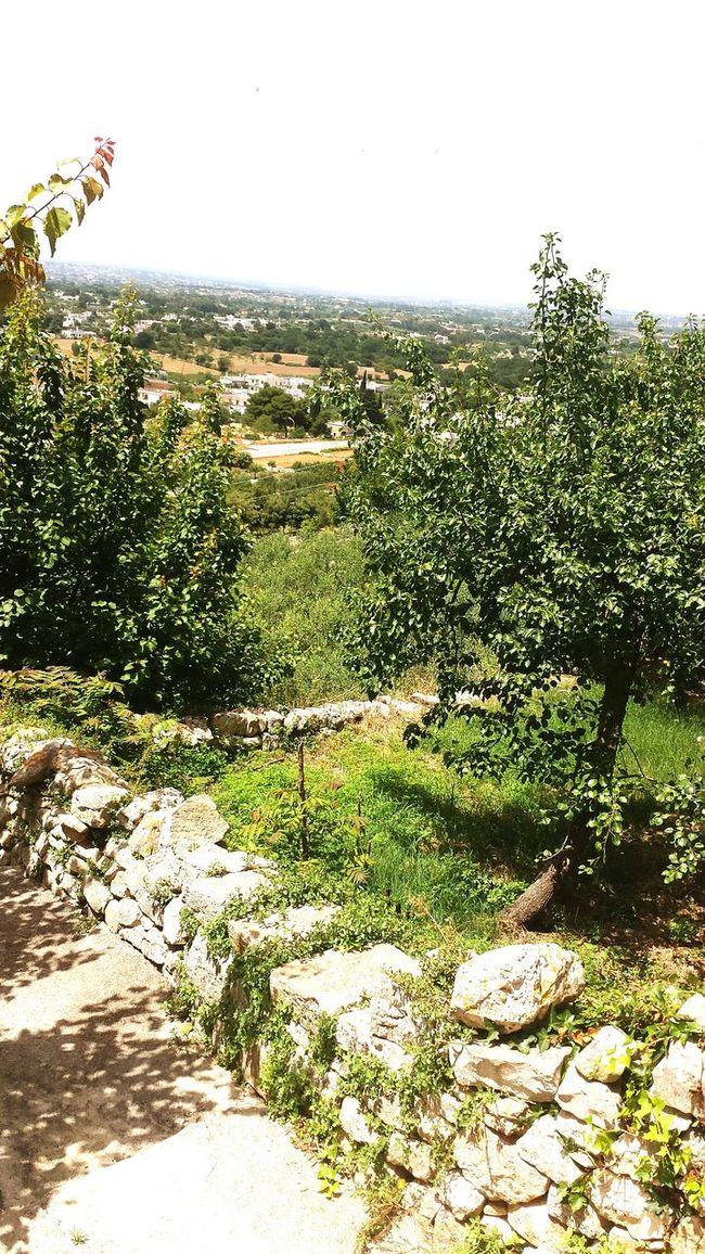Valleditria Valle Cisternino Scorci Puglia Weareinpuglia 😍😛😍😛