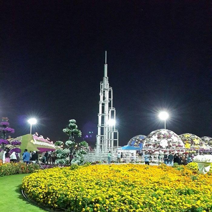 Burjkhalifa Replica  MiracleGarden Dubai UAE Flowers Garden