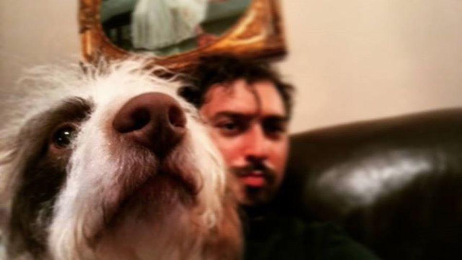 Dylan Pet Cute Petstagram Mäh Superhero Superdog