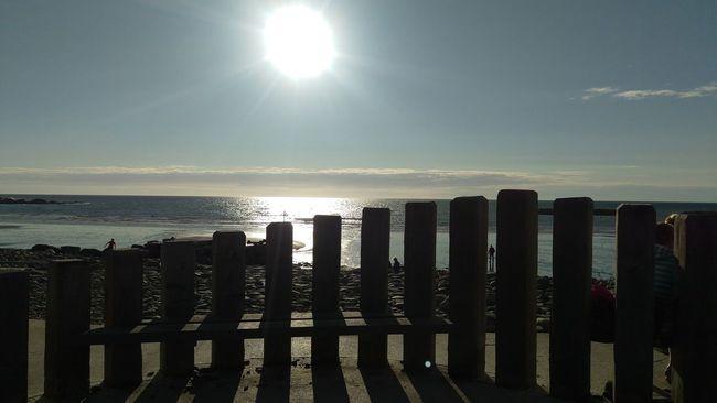 Sunset_collection Sunset Silhouettes Beach Beach Sunset Coastline Landscape Fences & Beyond