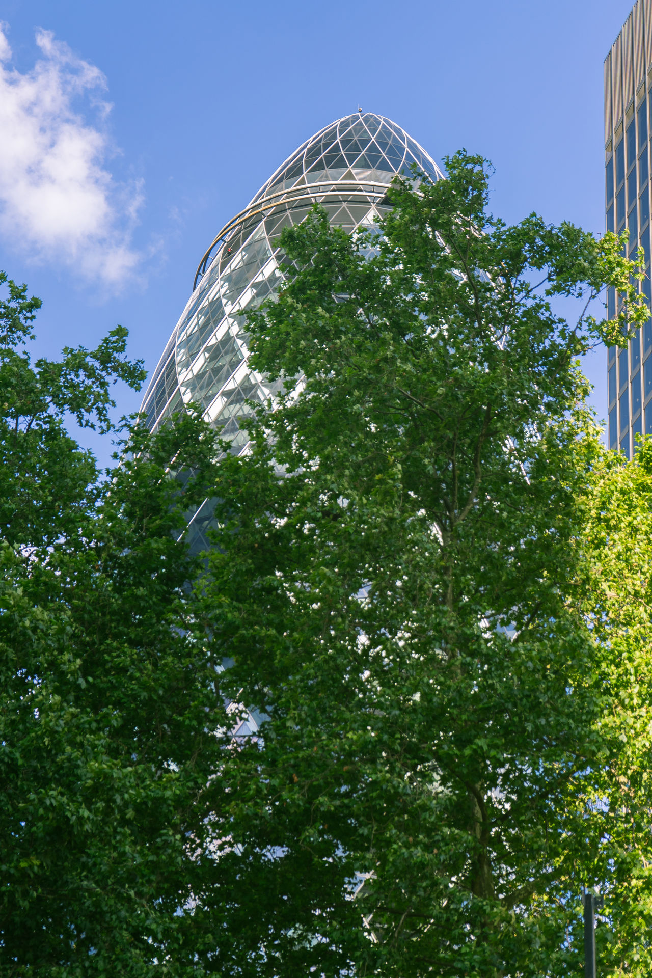 Adapted To The City Architecture Backgrounds City City Of London Cloud - Sky Futuristic Gherkin Gherkin Building Gherkin Tower London London Lifestyle LONDON❤ Low Angle View Modern No People Outdoors Sky Summer Tree