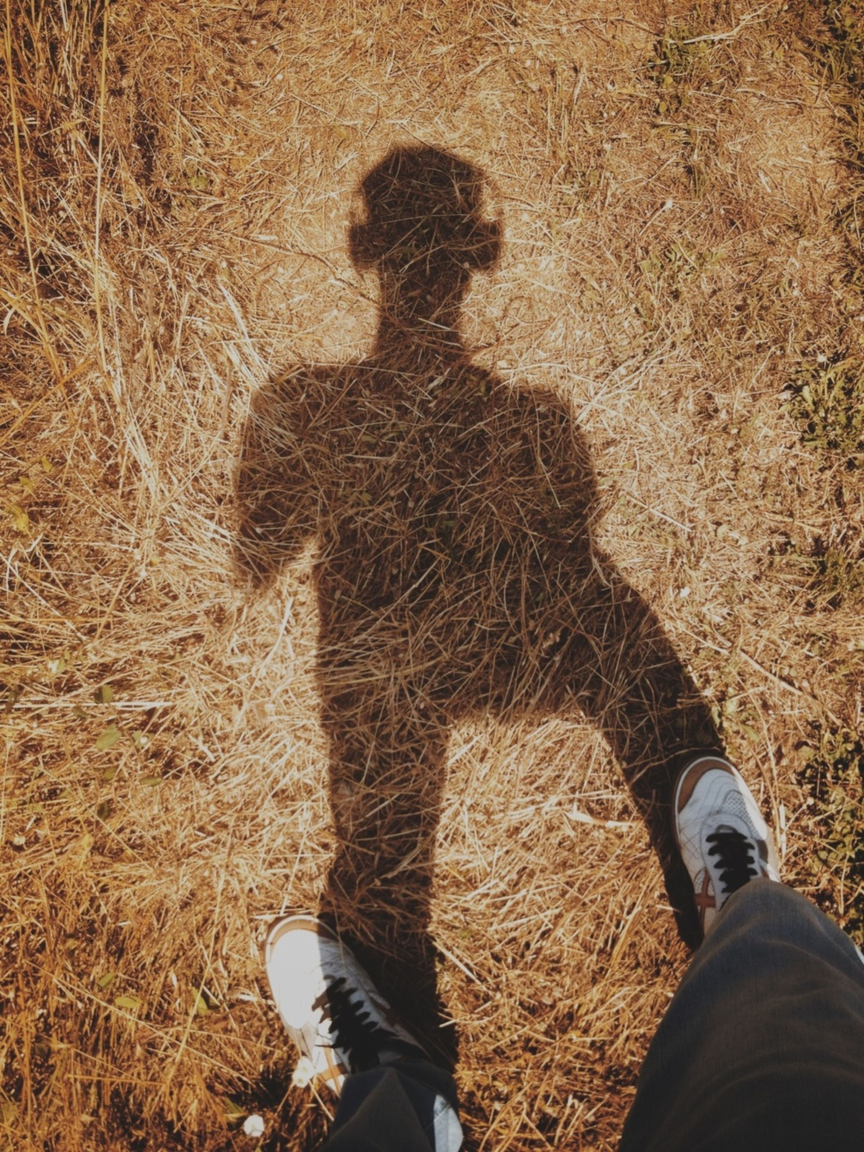 low section, person, personal perspective, lifestyles, shoe, standing, field, leisure activity, men, unrecognizable person, high angle view, human foot, grass, shadow, sunlight, part of, footwear