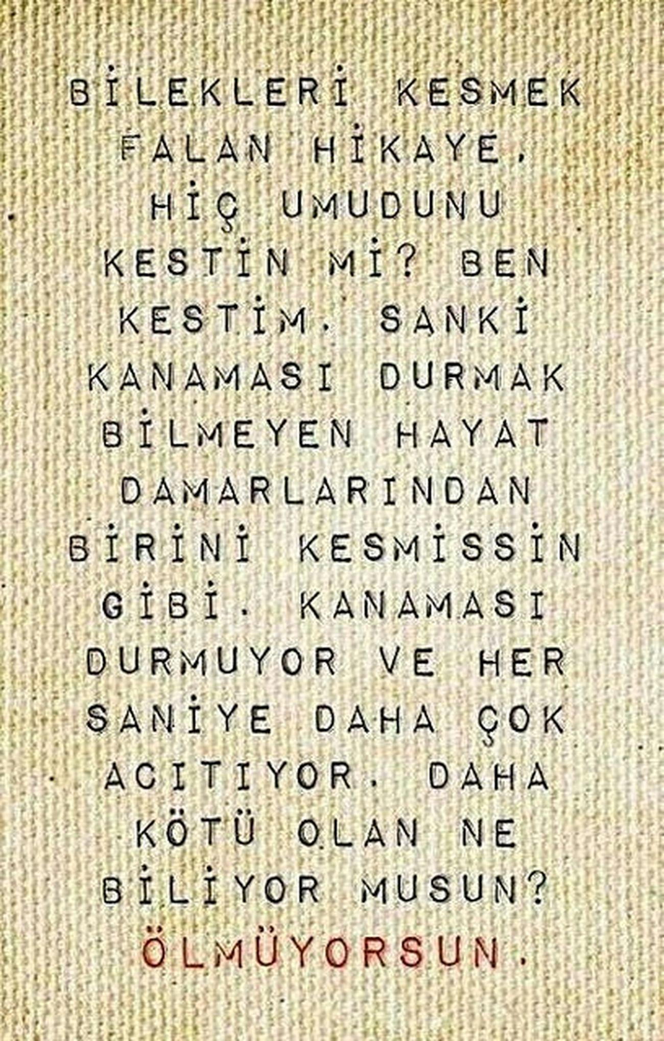 Edebiyat Siirsokakta Siir Siirdunyasi Siirheryerde Siirduvarda Siirhayatta Siirler Siirsokakta Siirheryerde Siirinibiraktim #şair #şiirkokusu #şiiraşkı #poem #poetry #poet #şiirsokakta #şiir Siirinibiraktim