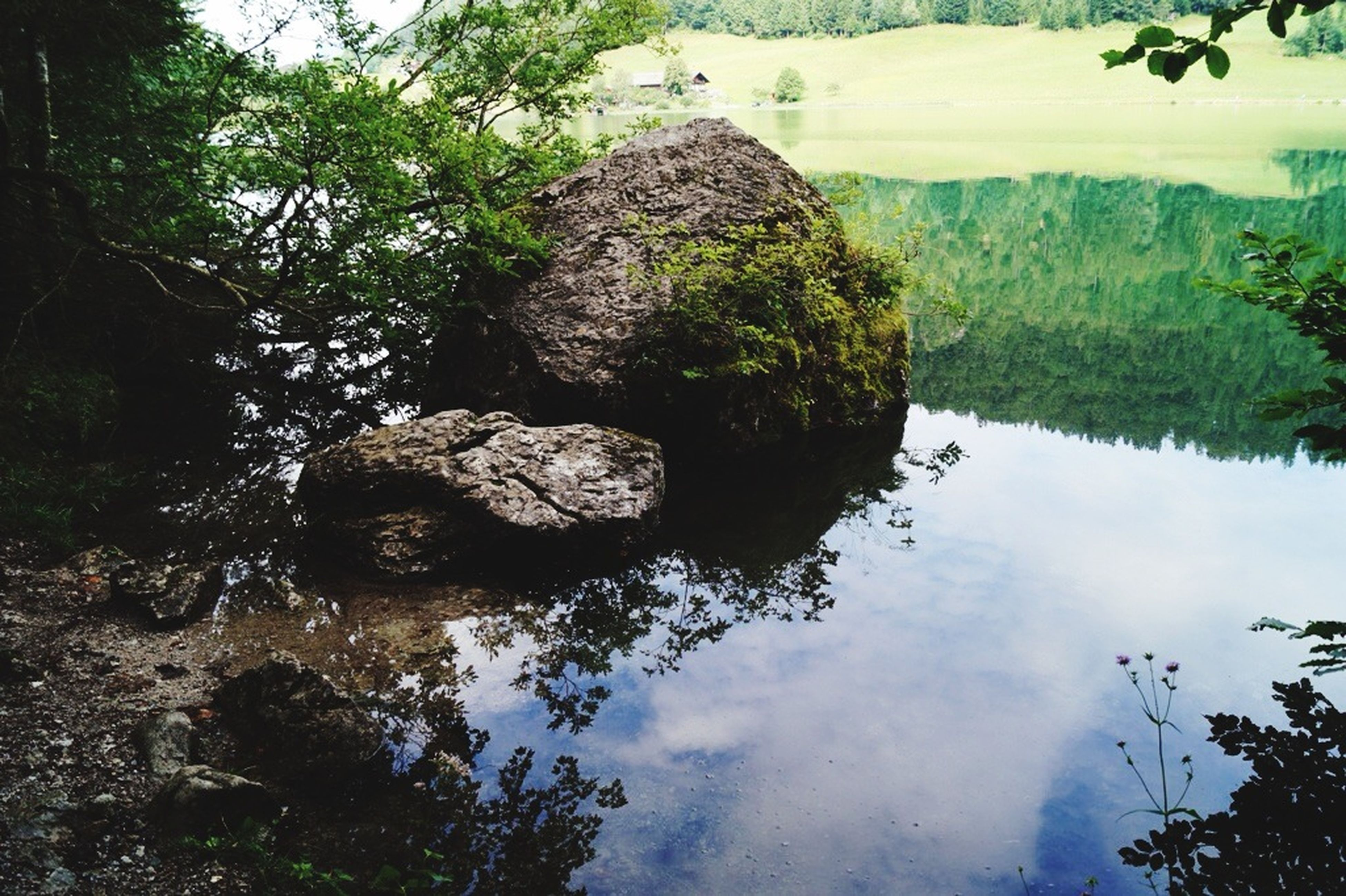 water, reflection, tranquility, tree, tranquil scene, scenics, nature, lake, beauty in nature, rock - object, sky, non-urban scene, day, idyllic, standing water, outdoors, river, waterfront, rock formation, no people