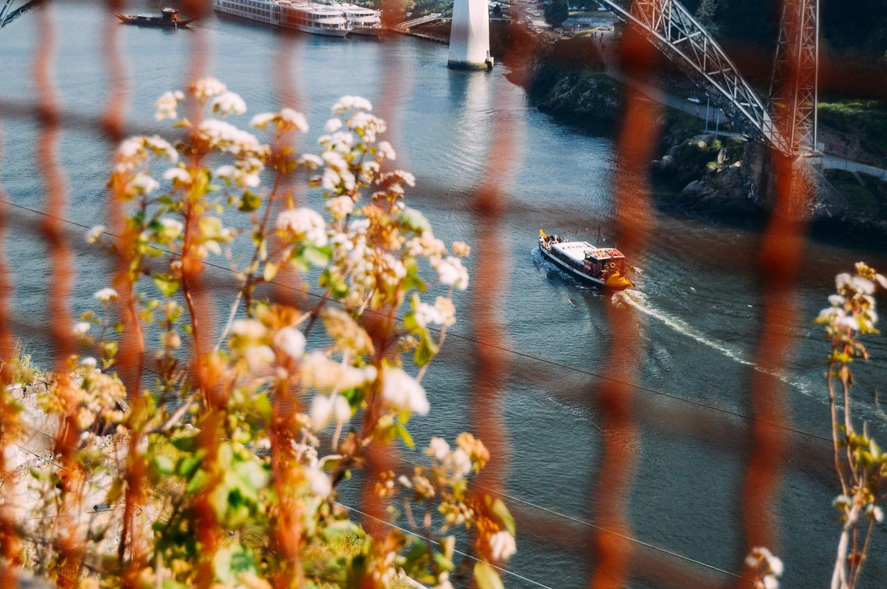 A walk by the river Blue Boat Day Eye4photography  EyeEm Best Shots EyeEm Nature Lover Film Film Photography Flowers High Angle View Nature Nature Nautical Vessel No People Outdoors River Transportation Water The Great Outdoors - 2017 EyeEm Awards
