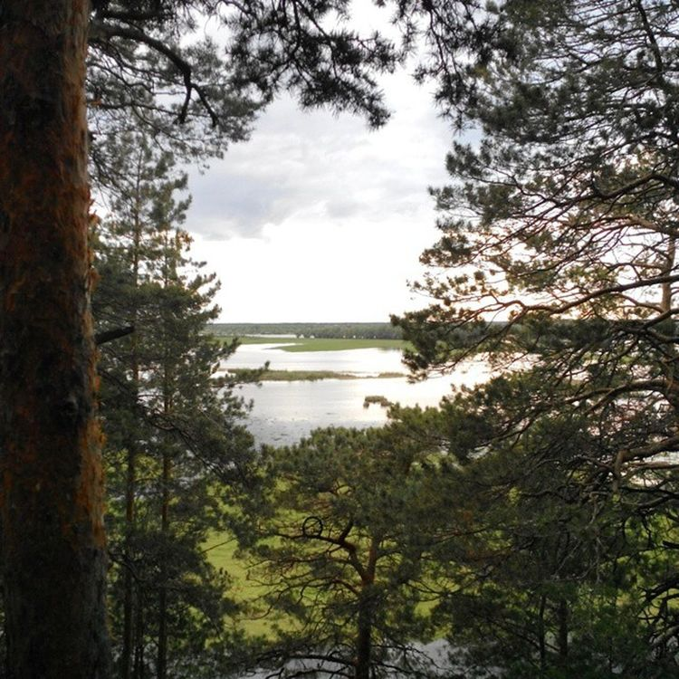 Omsk Siberiansummer Siberia Highwater Irtysh River кчзо омск сибирскоелето сибирь Разлив Иртыш полноводный