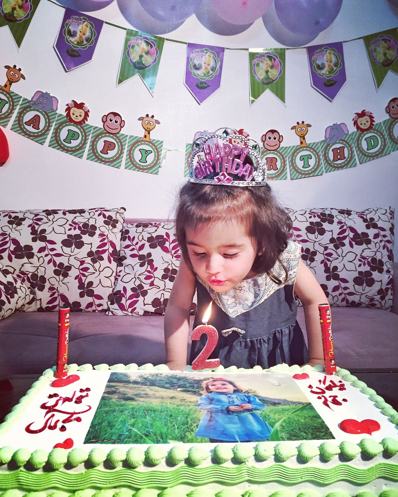 Birthday Celebration My Niece ❤ 2 Years Old Girl