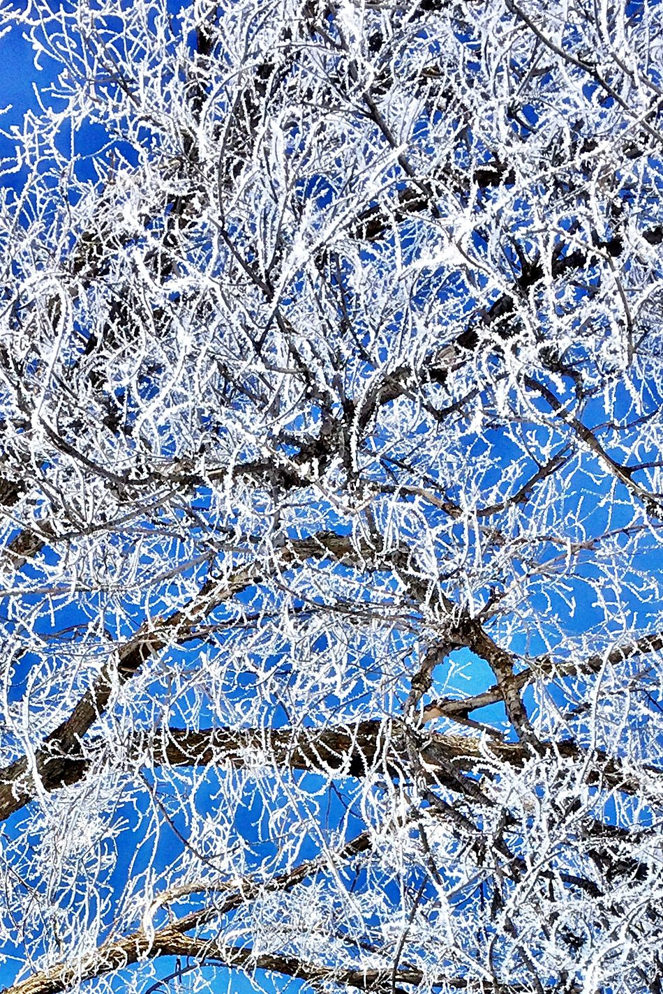 Abstract Backgrounds Close Up Close-up Cold Cold Temperature Full Frame No People Weather Winter