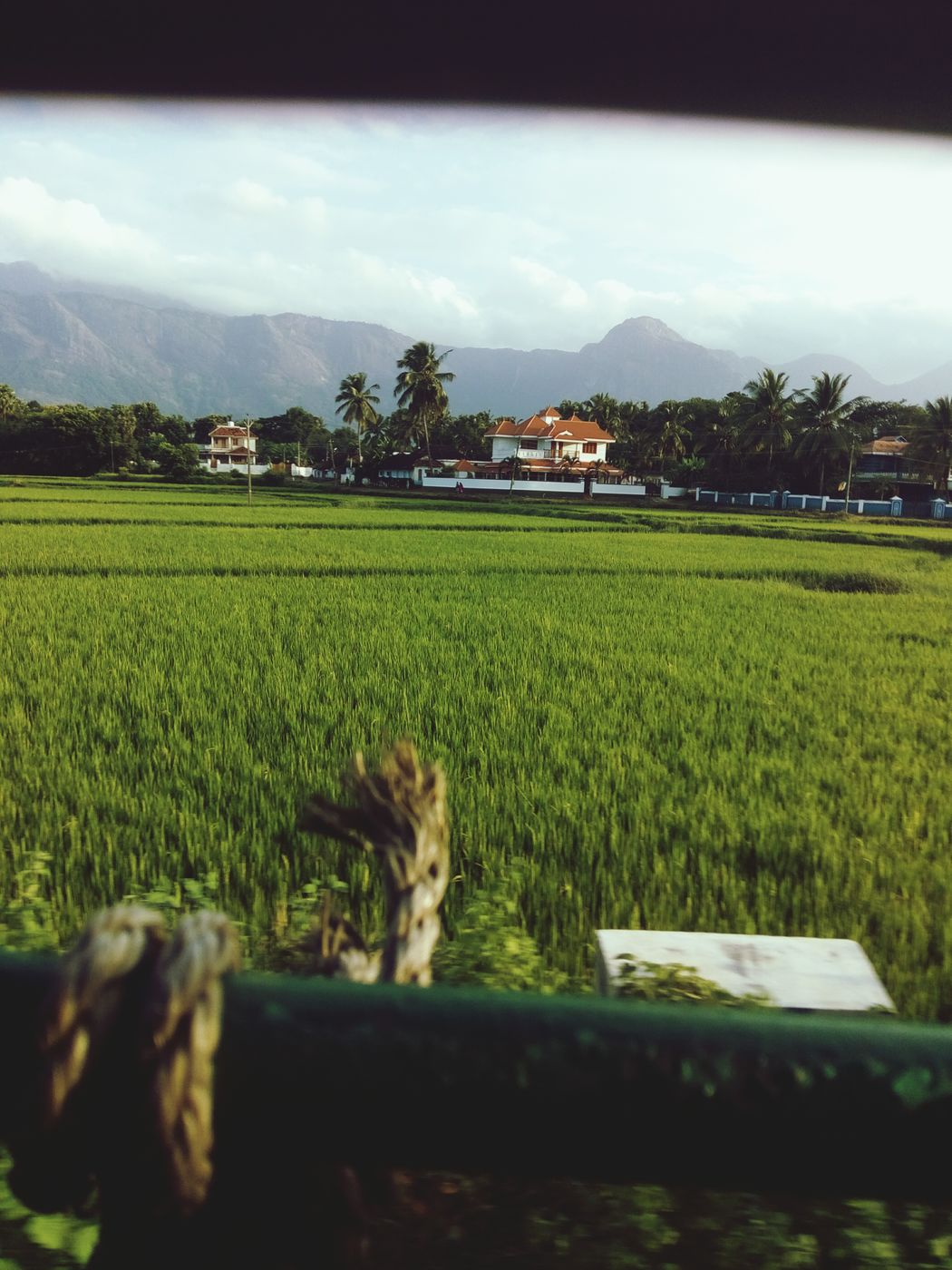 Green Bus Moving Huawei Holly2plus Travelling Fresh Field Window Frame Unexpected Mountains