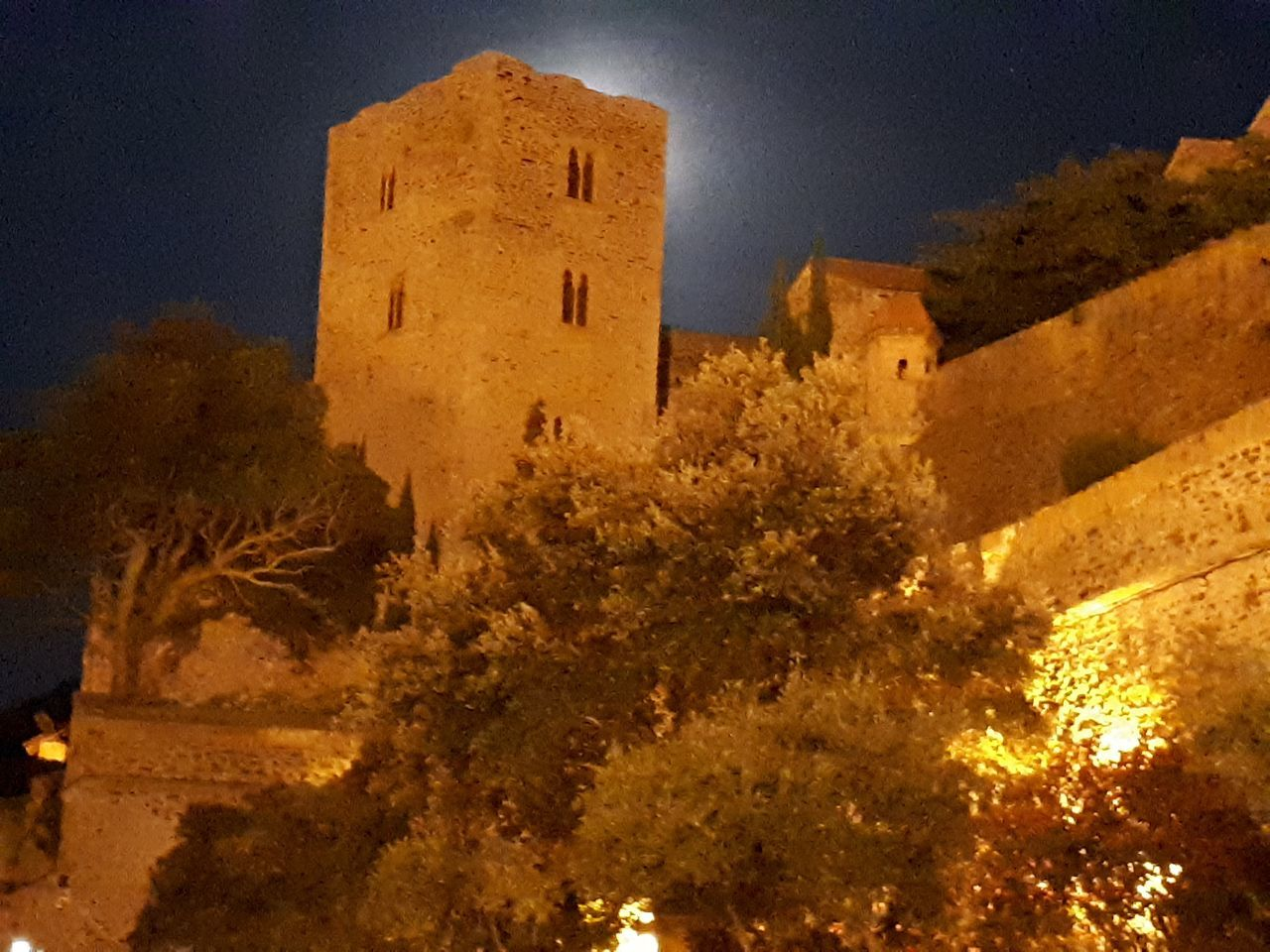 architecture, built structure, low angle view, building exterior, night, castle, history, no people, outdoors, fort, nature, tree, ancient civilization, sky