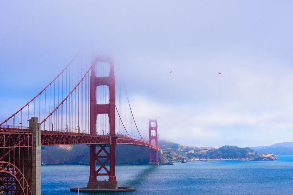 Beautiful stock photos of san francisco, San Francisco, United States, Urban, aerial View