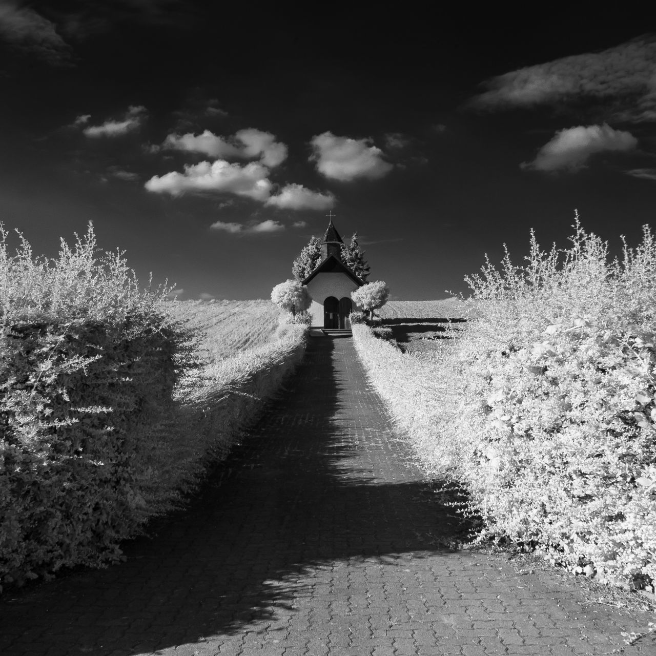 infraChapel Beauty In Nature Chapel Cloud - Sky Day Full Length Infrared Photography Nature One Person Outdoors People Real People Sky The Way Forward Tree Walking