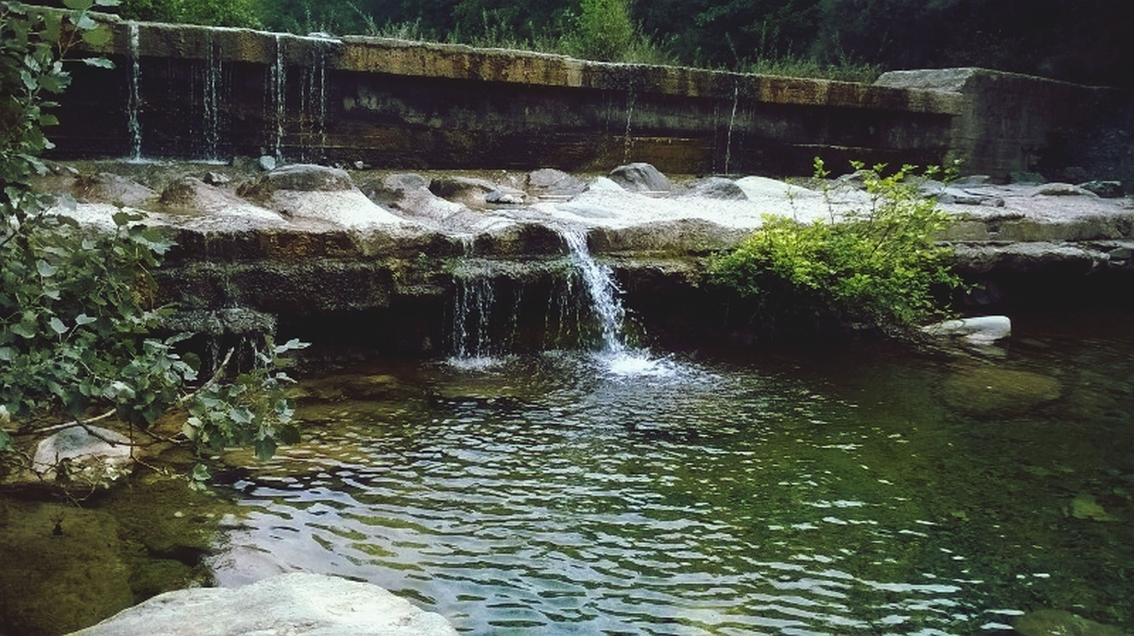 water, rock - object, flowing water, stream, waterfront, flowing, nature, beauty in nature, river, motion, scenics, waterfall, forest, tranquility, tranquil scene, rock, reflection, no people, long exposure, outdoors