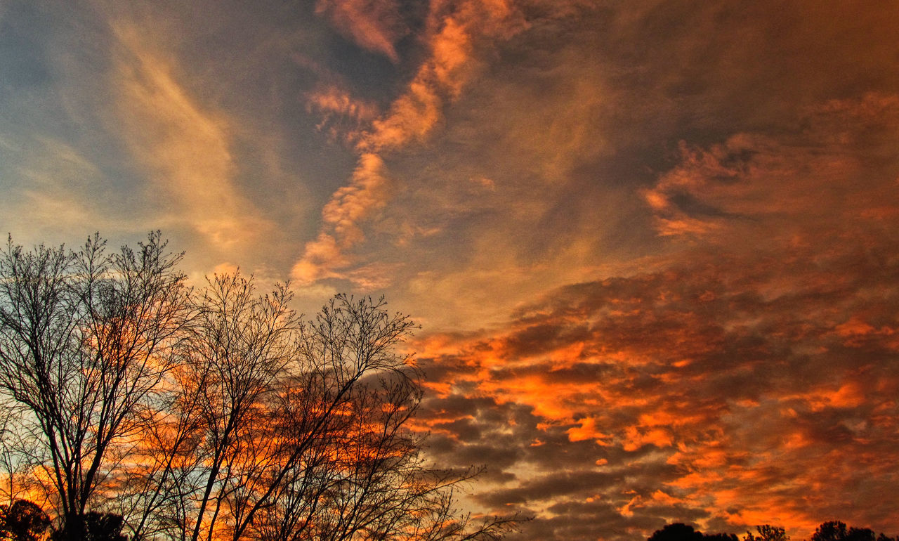 A beautiful sunset Beauty In Nature Cloud - Sky Low Angle View Nature No People Orange Color Outdoors Scenics Silhouette Sky Sunset Tree
