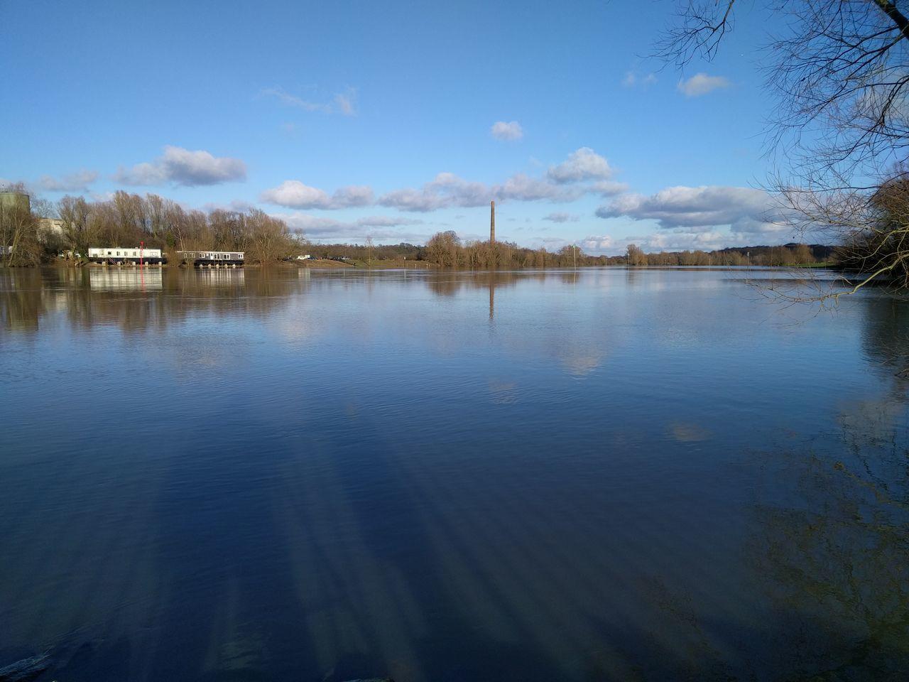 Nature Reserve River Rhine