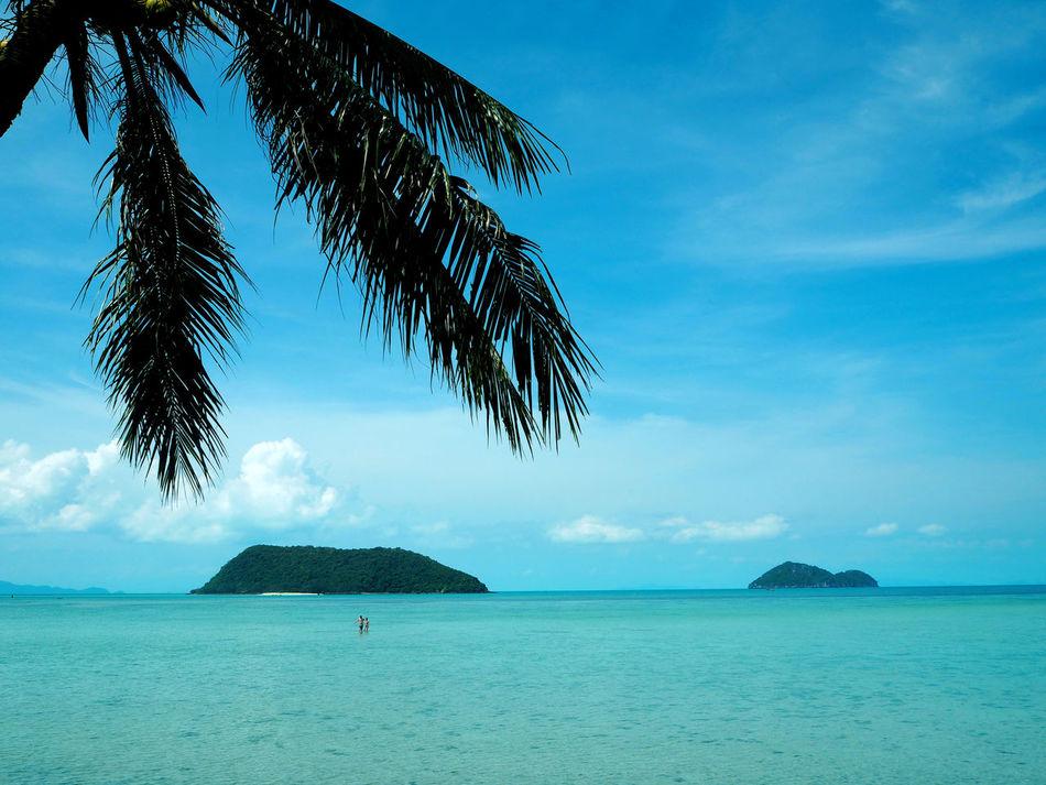 Beautiful stock photos of bangkok, Cyan, Horizontal Image, Vibrant Color, beach