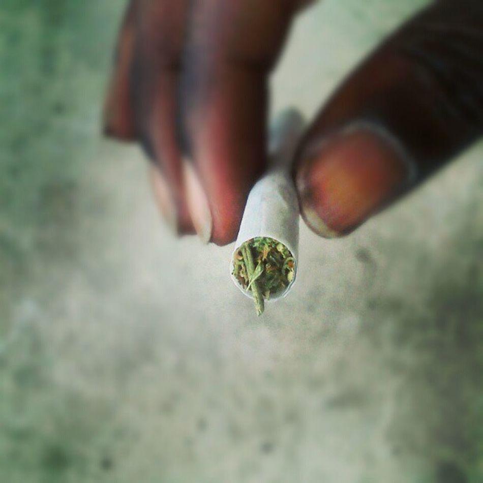 Weed Gethigher Doob Dank