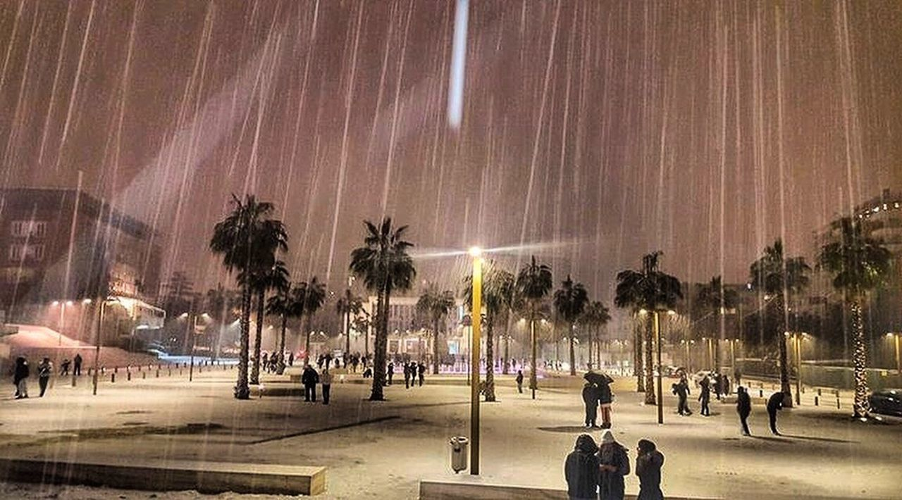 Durres Durres Albania Durresi City Life City Night Snow Winter January Bashkiadurres Albania Shqiperia Shqiperi Like Like4like Follow Tree Palm Tree Illuminated City Sky People Outdoors Large Group Of People Beauty In Nature Nature Adults Only Milky Way Adult